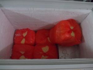 kami adalah produsen, agen, suplier, distributor utama jagung manis pipilan terbaik saat ini (INFO 021-91103389 )